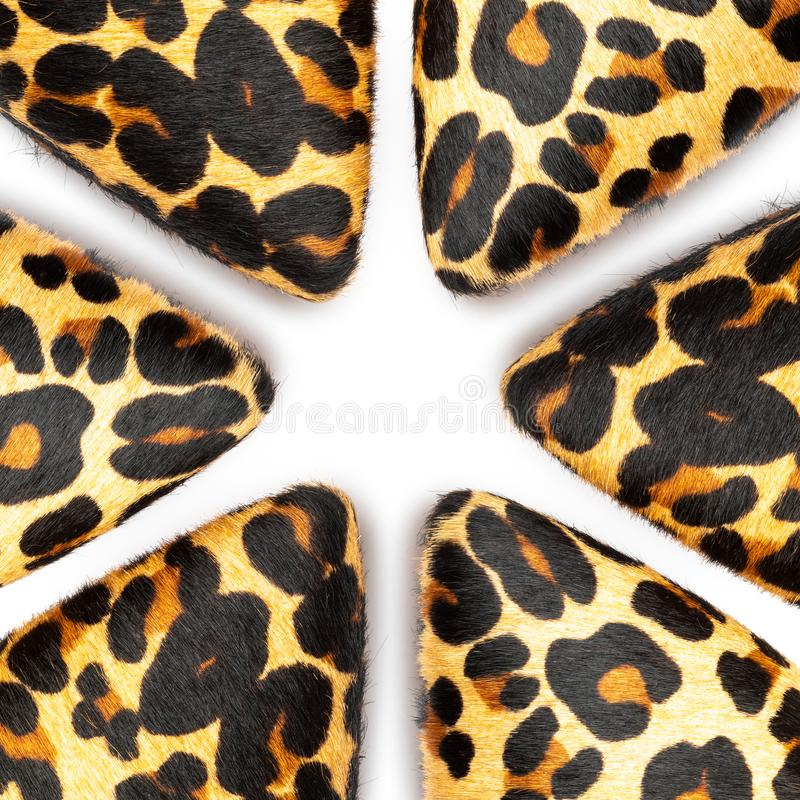 Leopard skin shoes royalty free stock image