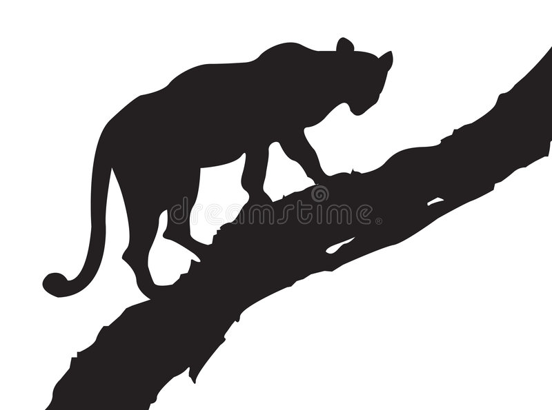 Download Leopard Tree stock vector. Image of south, exotic, danger - 3018260