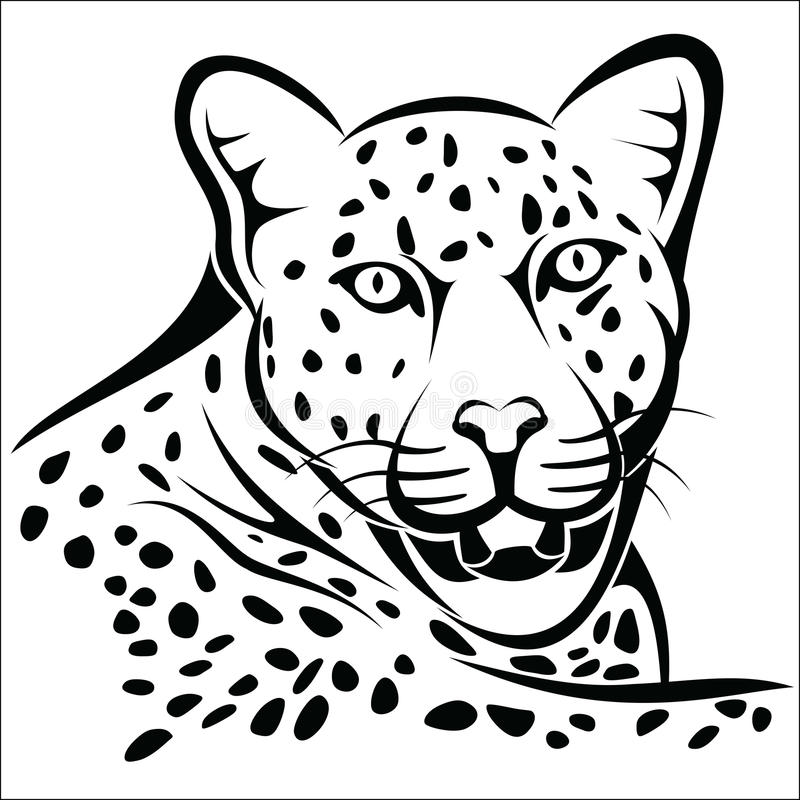 Leopard vector illustration