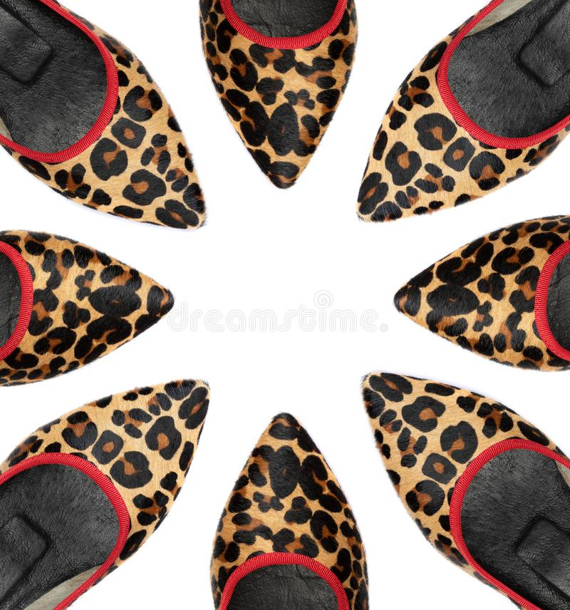 Leopard woman shoes on white background stock images