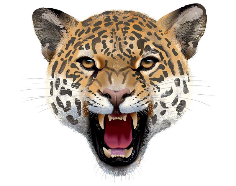 Leopardhuvud illustration royaltyfri illustrationer