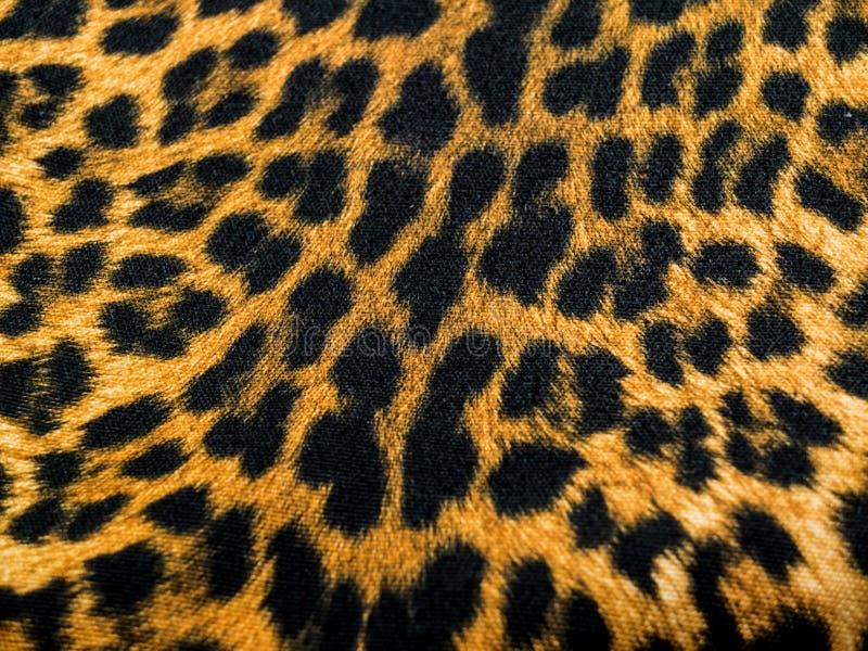 Leopardmodelltextil fotografering för bildbyråer