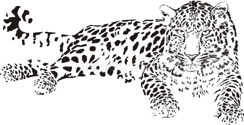 Leopardo ilustración del vector