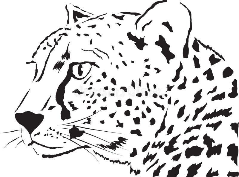 Leopardo royalty illustrazione gratis