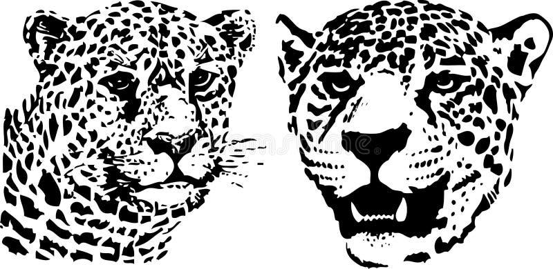Leopardo ilustração do vetor