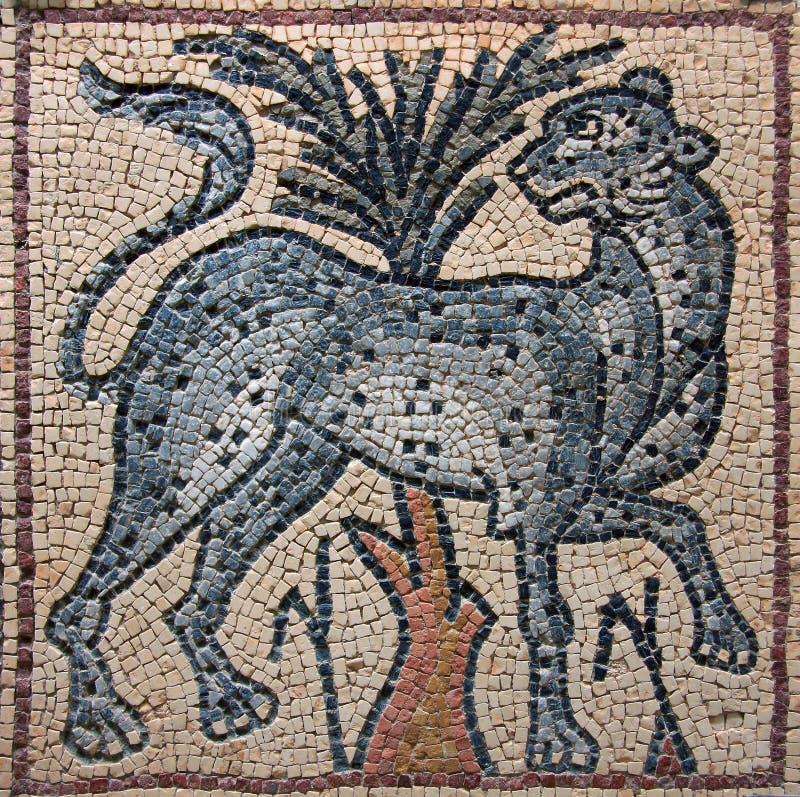 Leopardo bizantino do mosaico de Líbia Cyrenaica imagem de stock royalty free