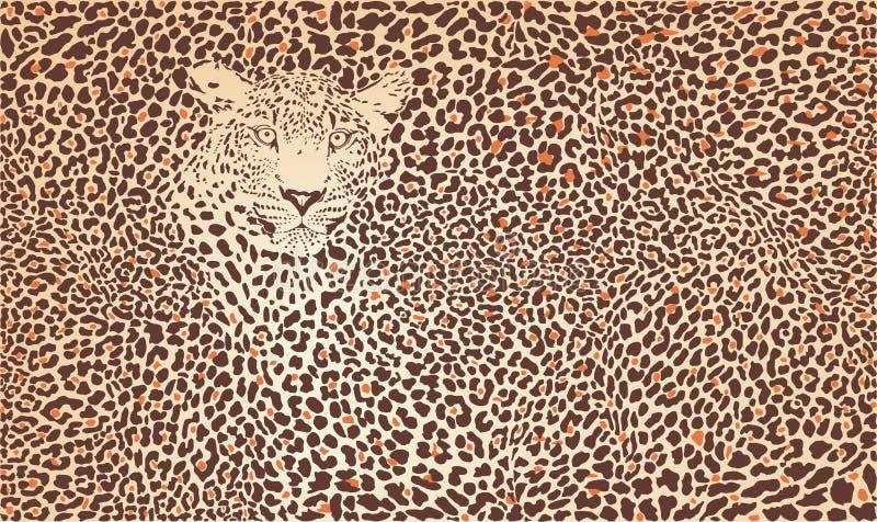 Leopardo do fundo do teste padrão ilustração royalty free