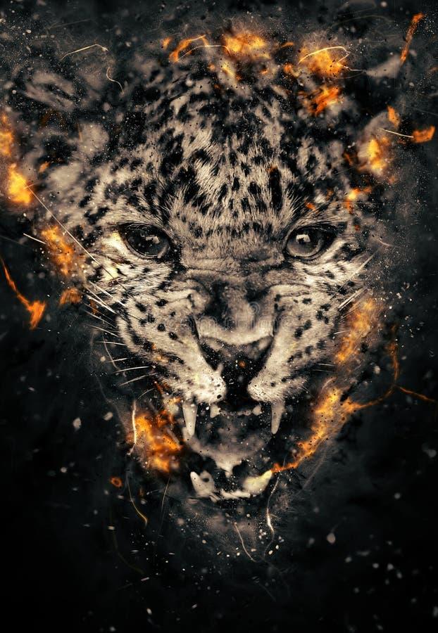 Leopardo en fuego imagen de archivo