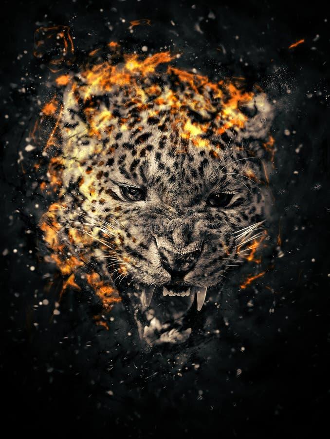 Leopardo en fuego foto de archivo