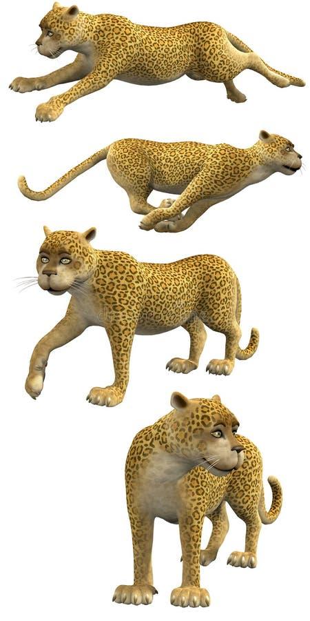 Leopardos dos desenhos animados ilustração stock