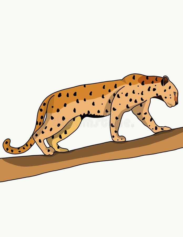 Leopard. S are the most prosperous species in the genus big cats. s live almost all over Africa and in Asia, from Turkey to India and the Far East. They adapted stock illustration