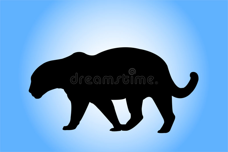 Leopardschattenbild stockfoto