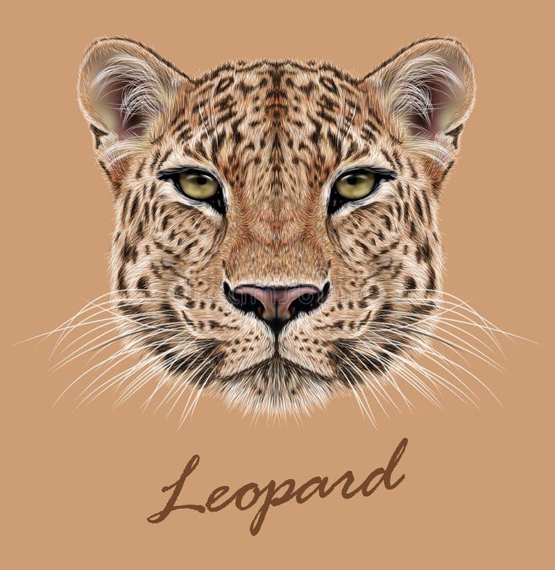 Leopardtiergesicht Vektor afrikanisch, Hauptporträt der asiatischen Wildkatze Realistisches Pelzporträt des exotischen Leoparden  stock abbildung