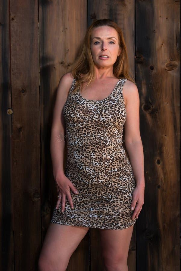 Leopardtryckklänning royaltyfri bild