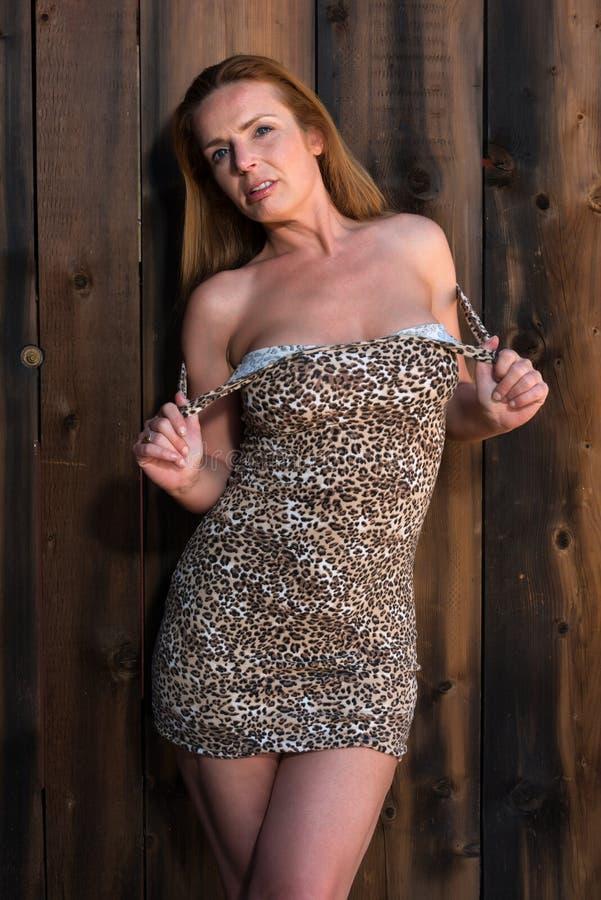Leopardtryckklänning arkivbilder