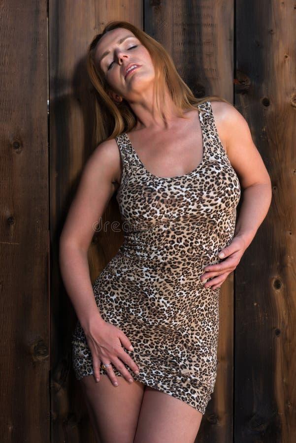 Leopardtryckklänning royaltyfria bilder