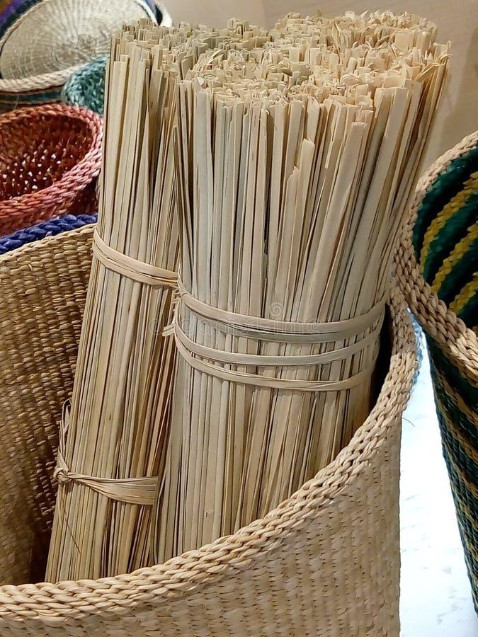 Lepironia articalata是能生产许多产品的杂草 免版税库存照片