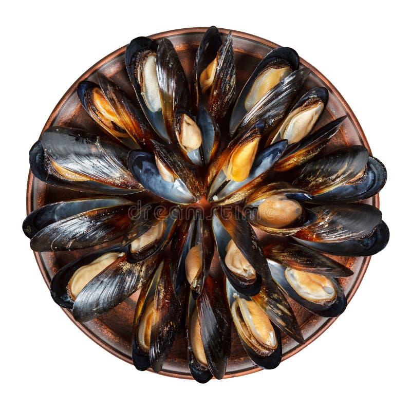 Leramaträtt med kokta musslor som isoleras på vit royaltyfri fotografi