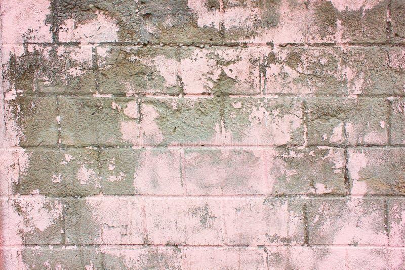 Lerciume rosa della vecchia parete fotografia stock libera da diritti