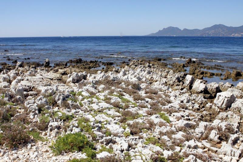 Lerins海岛法国 库存图片