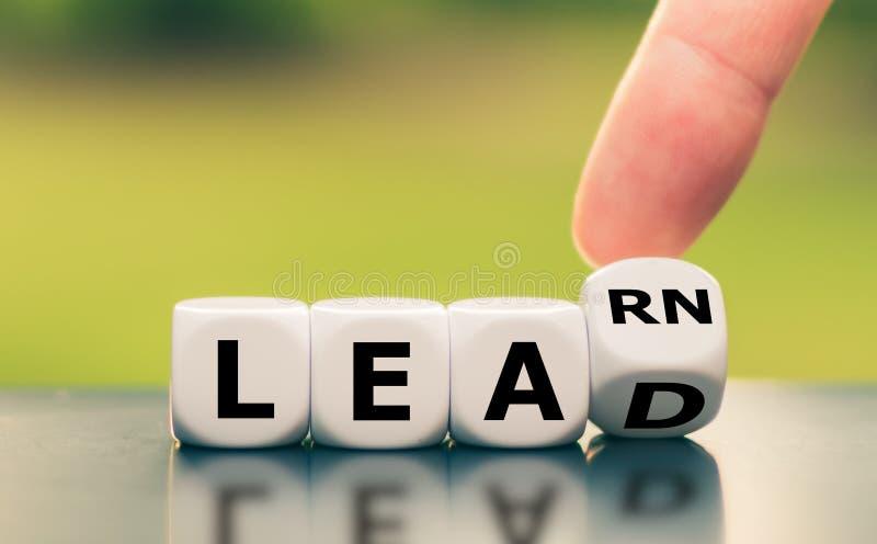 Lernen und Führung stockbild