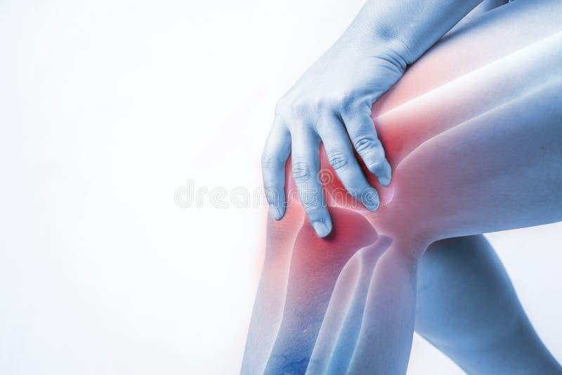 Lesão de joelho nos seres humanos dor do joelho, pessoa médico, mono destaque das dores articulares do tom no joelho imagens de stock