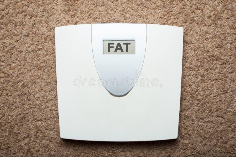 Les échelles électroniques de plancher au lieu du poids montrent la graisse de mot images stock