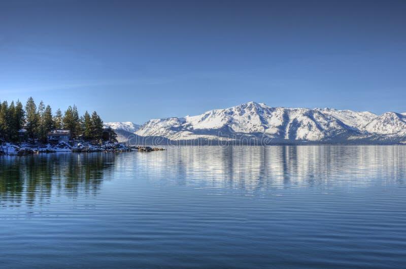 Les élans se dirigent, Lake Tahoe photos stock