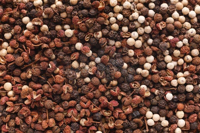 Les épices indiennes organiques mélangent le concept photo stock