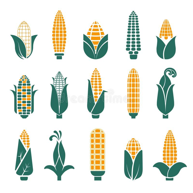 Les épis de maïs dirigent des icônes pour la céréale ou le grain illustration stock