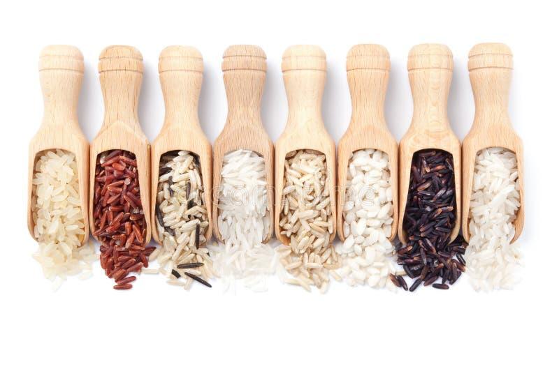 Les épuisettes en bois avec différents types de riz ont dispersé de eux photo libre de droits