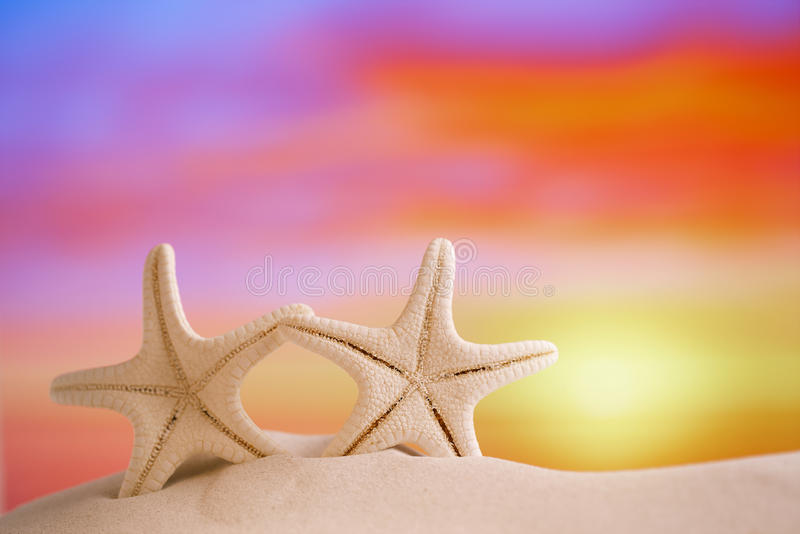 Les étoiles de mer blanches avec le ciel de lever de soleil sur le sable blanc échouent photo libre de droits