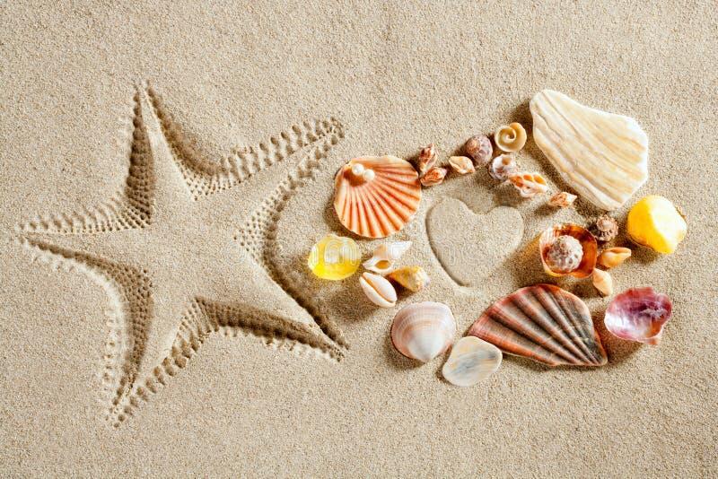Les étoiles de mer blanches de forme de coeur de sable de plage estampent l'été photo libre de droits