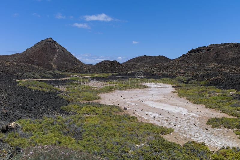 Les Îles Canaries de prés de sel photos stock