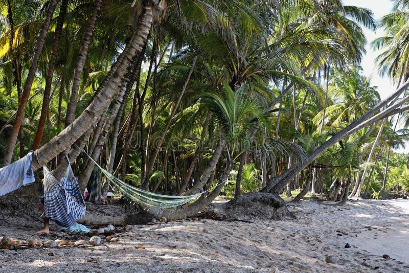 Les îles de salut, Guyane française photos libres de droits