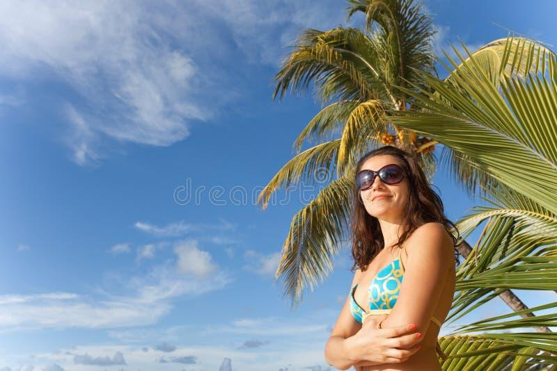 Les Îles Maurice images libres de droits