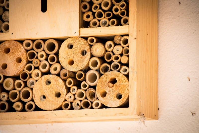 Les abeilles de maison d'abeille nichent le rondin en bois en bambou écologique images stock