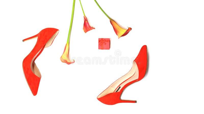 Les accessoires ?l?gants femelles fa?onnent l'?quipement de luxe r?gl? : chaussures, bo?te-cadeau et fleurs rouges ? l'arri?re-pl images libres de droits