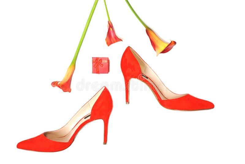 Les accessoires ?l?gants femelles fa?onnent l'?quipement de luxe r?gl? : chaussures, cadeau et fleurs rouges ? l'arri?re-plan bla photographie stock libre de droits