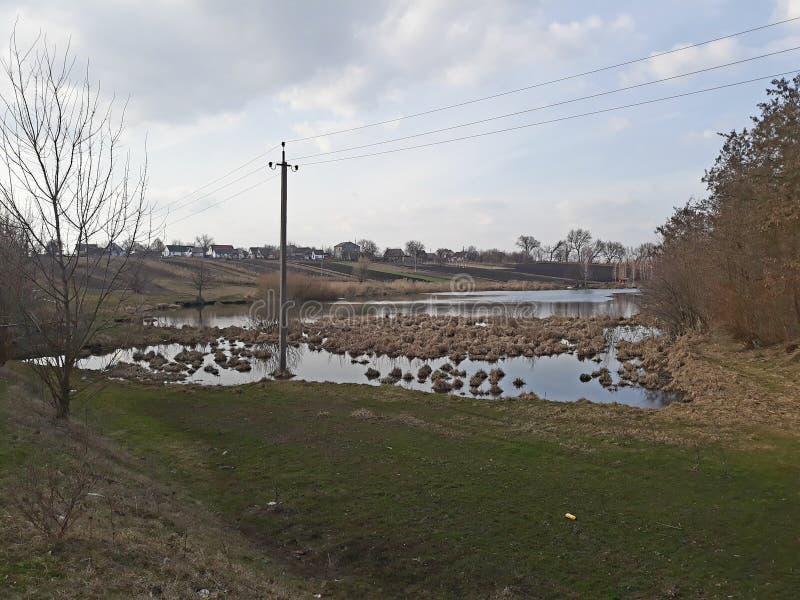 Les accumulations de l'herbe sèche en rivière marécageuse photographie stock