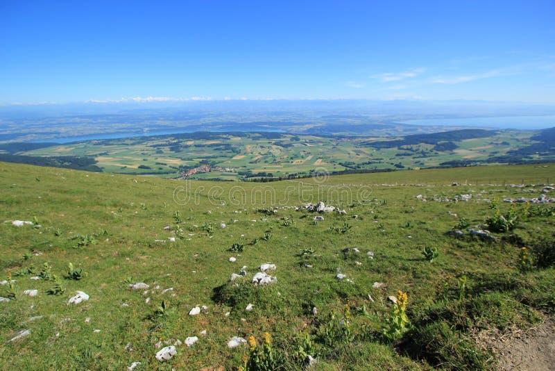 Les Alpes du Chasseral montent, Jura, Suisse images libres de droits