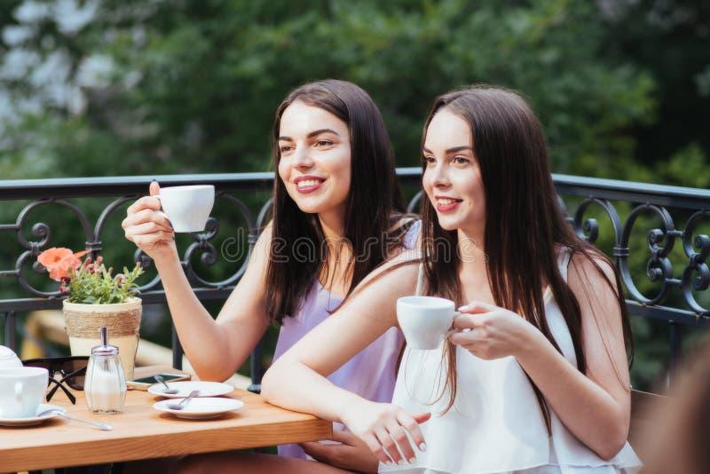 Les amies s'asseyent dans le café et le thé potable photographie stock libre de droits