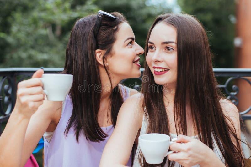 Les amies s'asseyent dans le café et le thé potable photo libre de droits