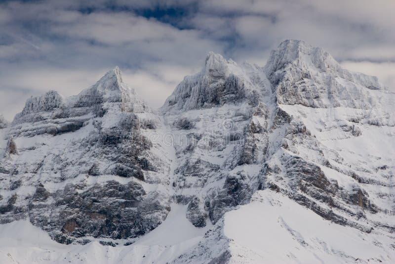 Les Ammaccatura-du-Midi immagini stock libere da diritti