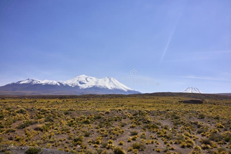 Les Andes du désert d'Atacama image libre de droits