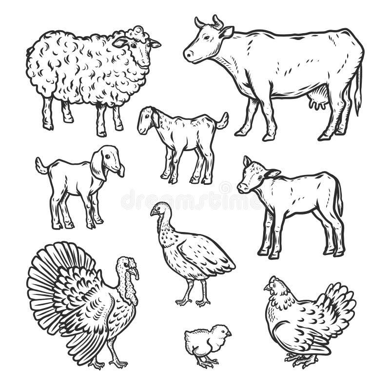 Les animaux de ferme ont détaillé l'ensemble d'icône, style d'ensemble illustration libre de droits