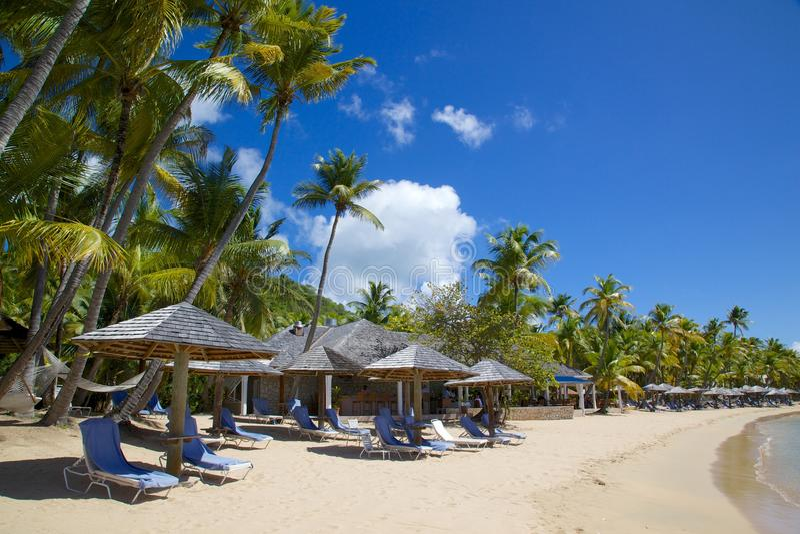 Les Antilles, les Caraïbe, l'Antigua, St Mary, le Morris Bay, les palmiers et la plage au coucher du soleil photo libre de droits
