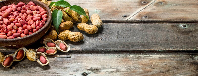 Les arachides écossées dans une cuvette photo stock