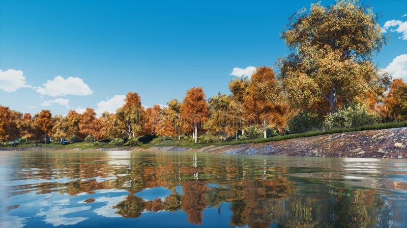 Les arbres colorés d'automne sur un lac de forêt étayent images libres de droits