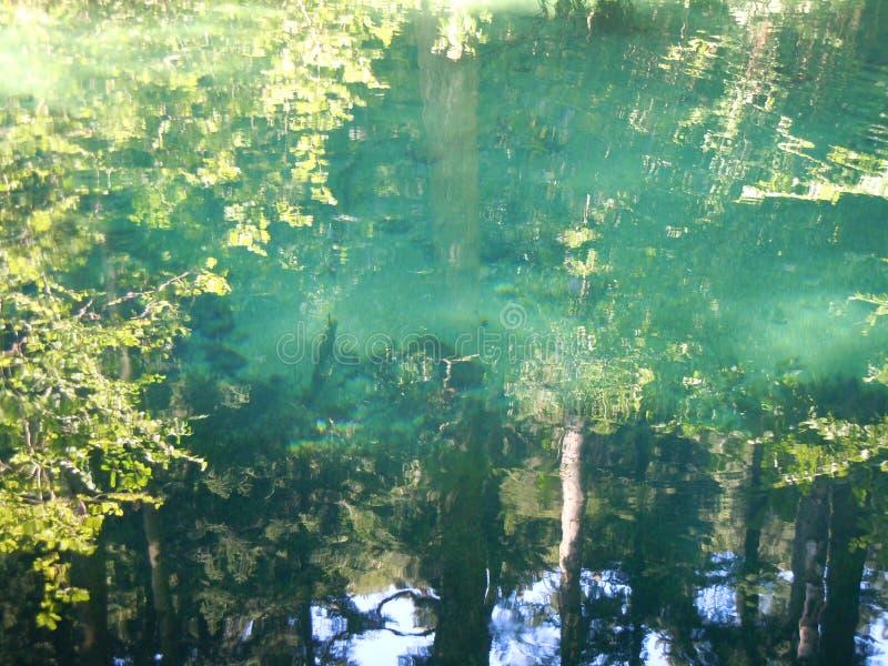 Les arbres, les couleurs, les lumi?res et les ombres se refl?tent dans le lac eye du Beiu photos libres de droits